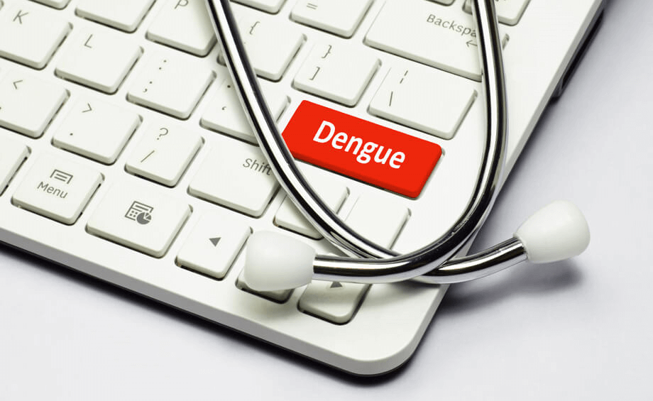 All you need to know about dengue - Goodknight Blog