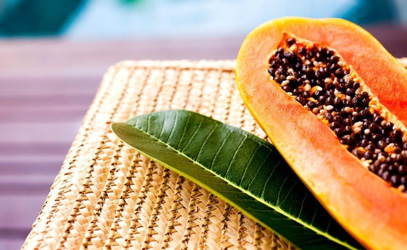 Can papaya leaves cure dengue? - Goodknight Blog