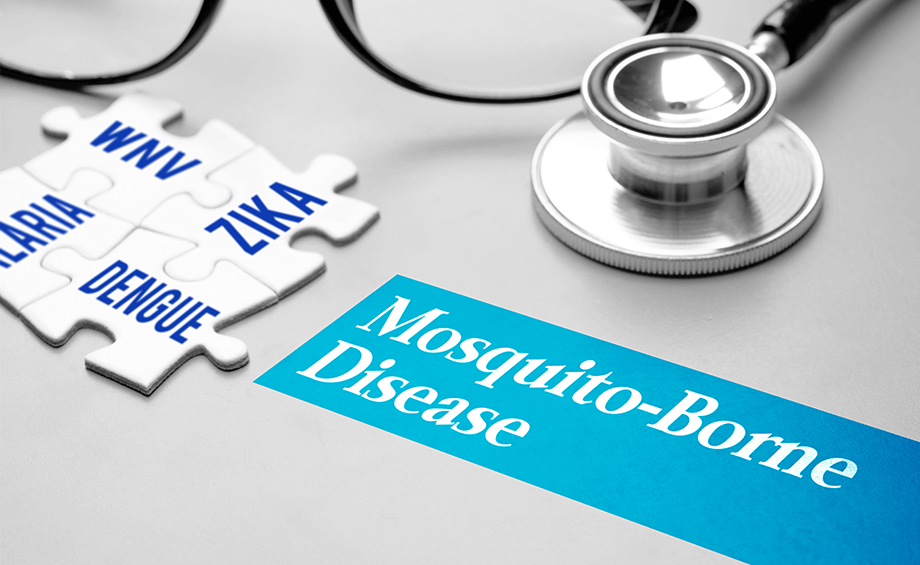 Treatment to cure Mosquito-borned Diseases