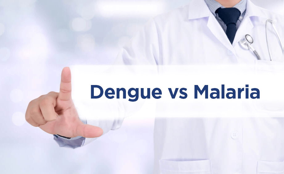 Dengue vs Malaria