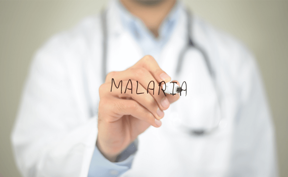 What are the Types of Malaria in India? - Goodknight